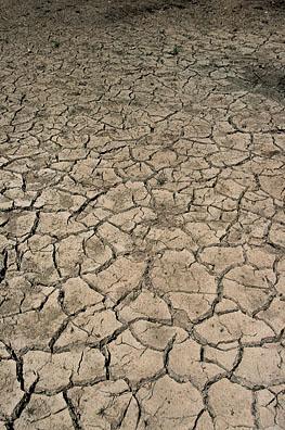 drought_1.jpg