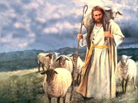Jesus_sheep
