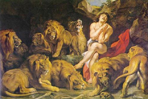 Lion_daniel