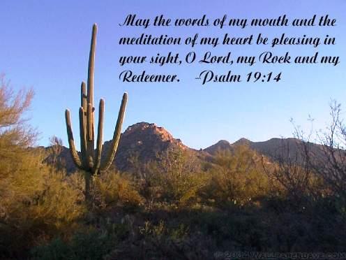 Psalm_19