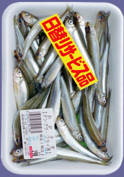 Tokyofishbunch