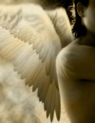 Wingangelgod